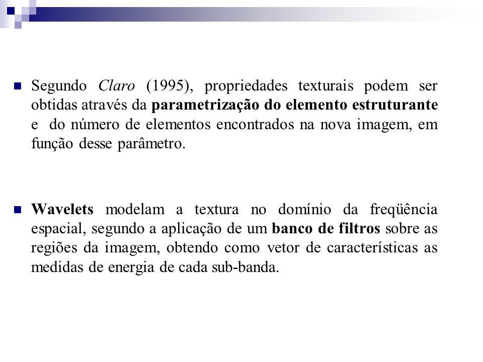 Segundo Claro (1995), propriedades texturais podem ser obtidas através da parametrização do elemento estruturante e do número de elementos encontrados