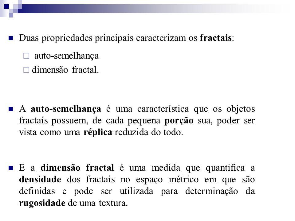Duas propriedades principais caracterizam os fractais: auto-semelhança dimensão fractal. A auto-semelhança é uma característica que os objetos fractai