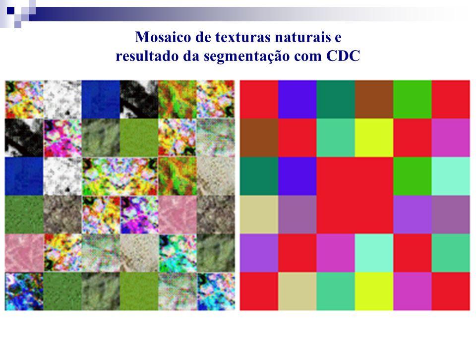 Mosaico de texturas naturais e resultado da segmentação com CDC