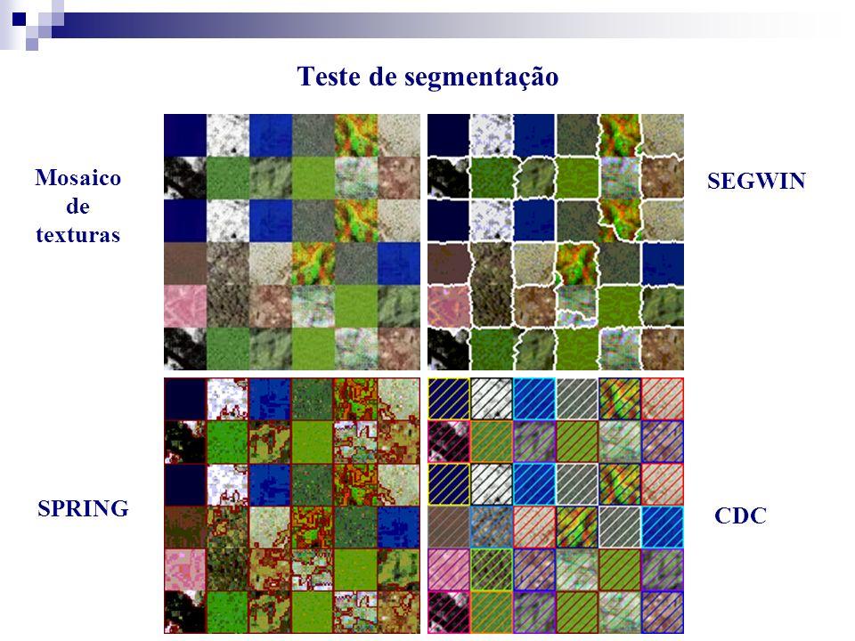 Mosaico de texturas SPRING SEGWIN CDC Teste de segmentação