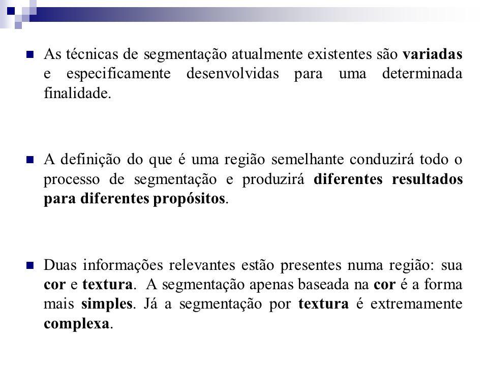 As técnicas de segmentação atualmente existentes são variadas e especificamente desenvolvidas para uma determinada finalidade. A definição do que é um