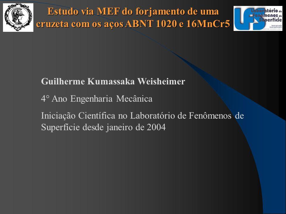 Estudo via MEF do forjamento de uma cruzeta com os aços ABNT 1020 e 16MnCr5 Guilherme Kumassaka Weisheimer 4° Ano Engenharia Mecânica Iniciação Cientí