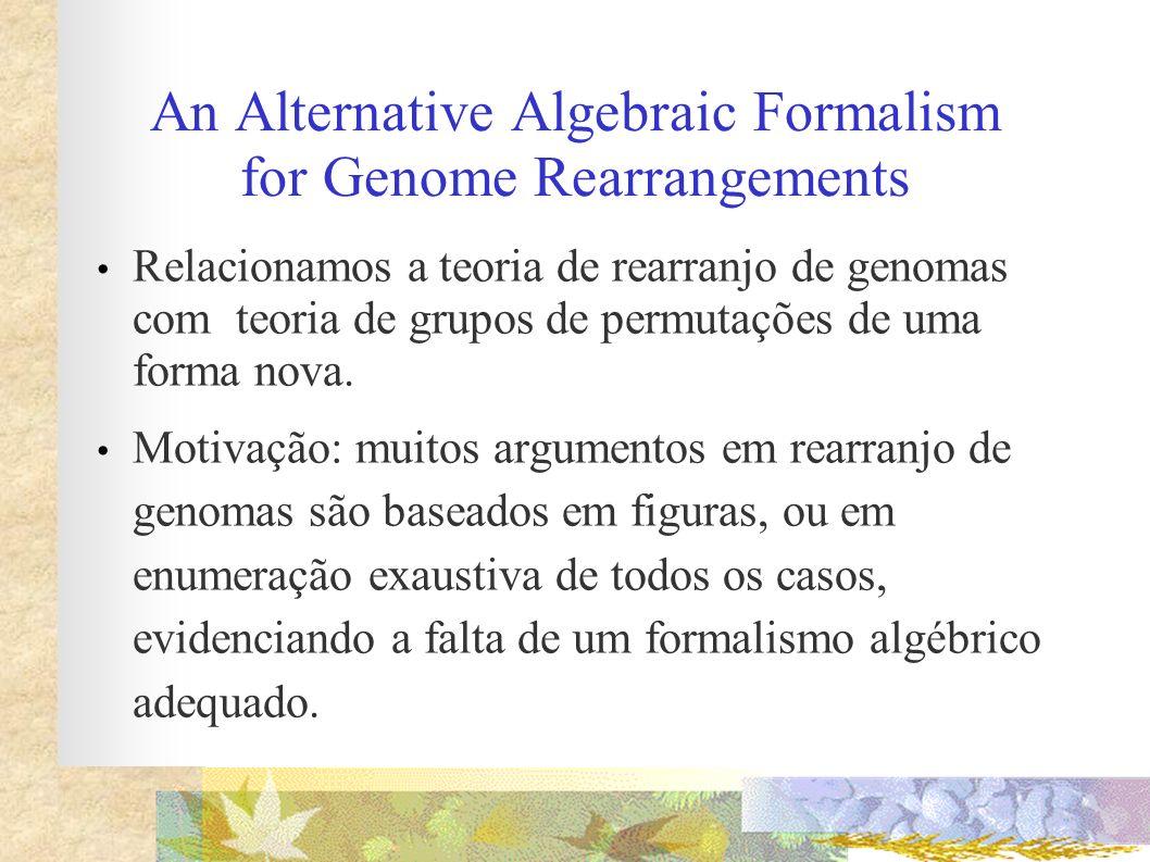 An Alternative Algebraic Formalism for Genome Rearrangements Relacionamos a teoria de rearranjo de genomas com teoria de grupos de permutações de uma