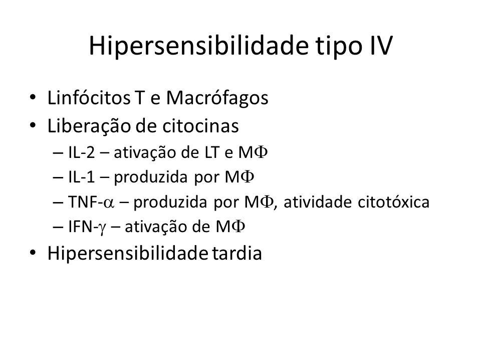 Hipersensibilidade tipo IV Linfócitos T e Macrófagos Liberação de citocinas – IL-2 – ativação de LT e M – IL-1 – produzida por M – TNF- – produzida po