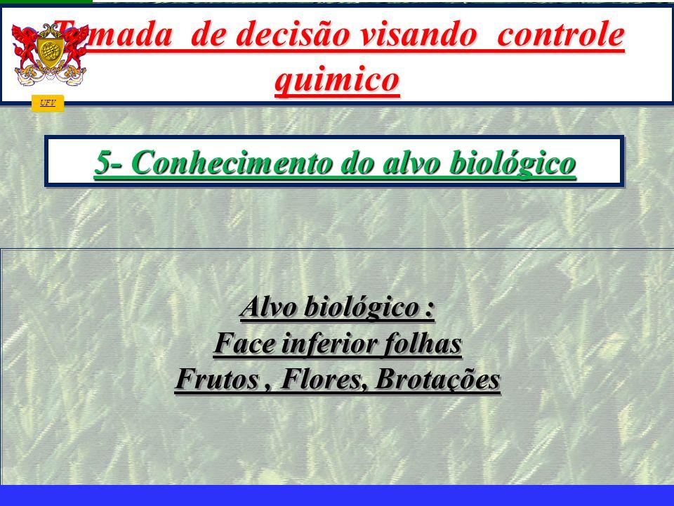 mzuppi.cursos@gmail.com Educação e Treinamento do Homem do Campo Alvo biológico : Face inferior folhas Frutos, Flores, Brotações Alvo biológico : Face