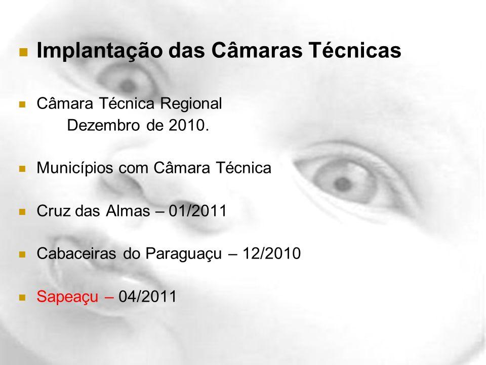 Implantação das Câmaras Técnicas Câmara Técnica Regional Dezembro de 2010. Municípios com Câmara Técnica Cruz das Almas – 01/2011 Cabaceiras do Paragu