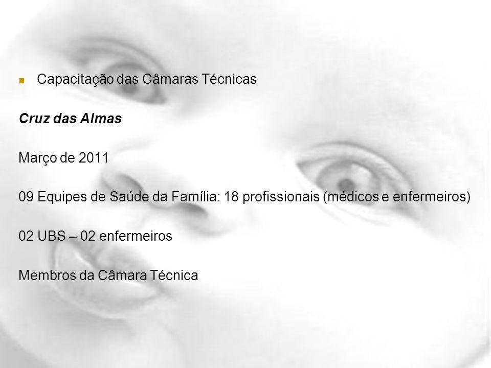Capacitação das Câmaras Técnicas Cruz das Almas Março de 2011 09 Equipes de Saúde da Família: 18 profissionais (médicos e enfermeiros) 02 UBS – 02 enf