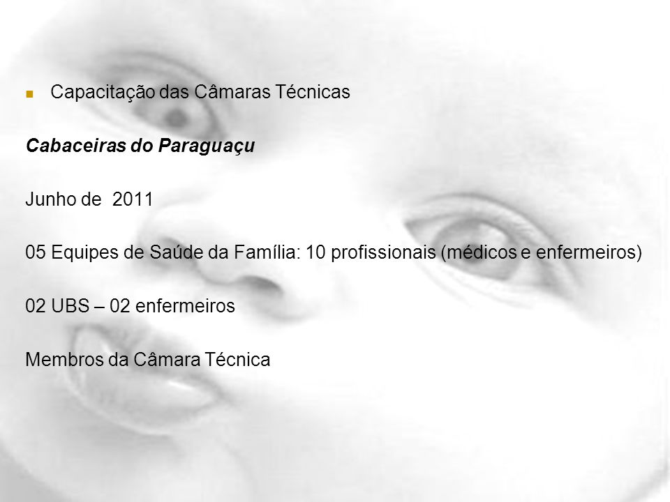 Capacitação das Câmaras Técnicas Cabaceiras do Paraguaçu Junho de 2011 05 Equipes de Saúde da Família: 10 profissionais (médicos e enfermeiros) 02 UBS