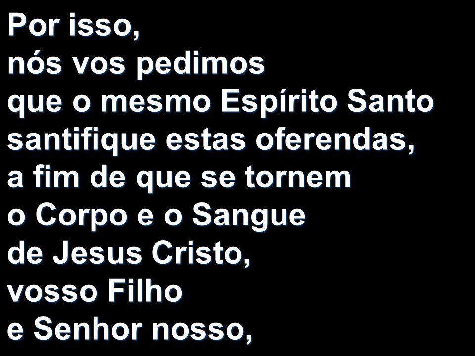 Por isso, nós vos pedimos que o mesmo Espírito Santo santifique estas oferendas, a fim de que se tornem o Corpo e o Sangue de Jesus Cristo, vosso Filh