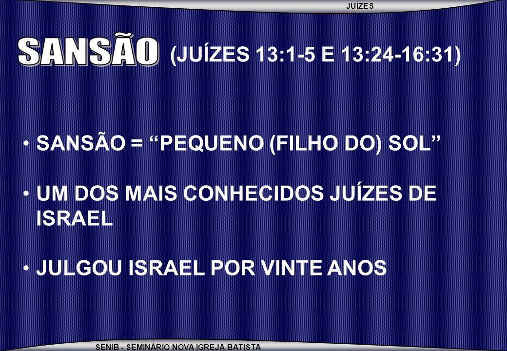 JUÍZES SENIB - SEMINÁRIO NOVA IGREJA BATISTA SANSÃO = PEQUENO (FILHO DO) SOL UM DOS MAIS CONHECIDOS JUÍZES DE ISRAEL JULGOU ISRAEL POR VINTE ANOS (JUÍ