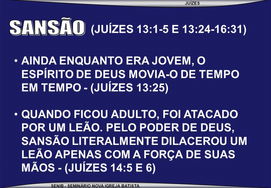 JUÍZES SENIB - SEMINÁRIO NOVA IGREJA BATISTA AINDA ENQUANTO ERA JOVEM, O ESPÍRITO DE DEUS MOVIA-O DE TEMPO EM TEMPO - (JUÍZES 13:25) QUANDO FICOU ADUL