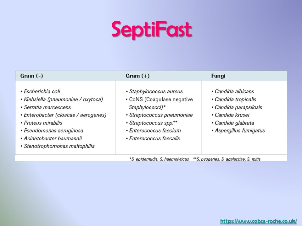 SeptiFast
