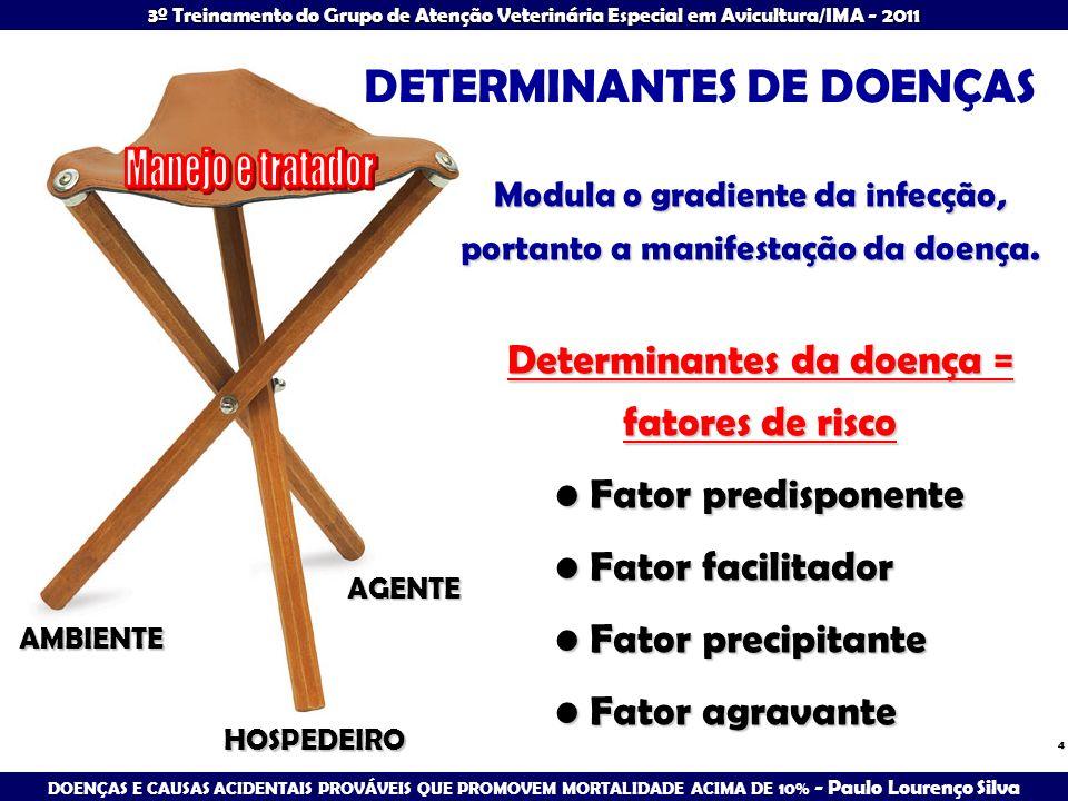 DOENÇAS E CAUSAS ACIDENTAIS PROVÁVEIS QUE PROMOVEM MORTALIDADE ACIMA DE 10% - Paulo Lourenço Silva 3º Treinamento do Grupo de Atenção Veterinária Especial em Avicultura/IMA - 2011 25 PROCEDIMENTOS NO DIAGNÓSTICO EPIDEMIOLÓGICO - PERGUNTAS ENVOLVIDAS O que é.