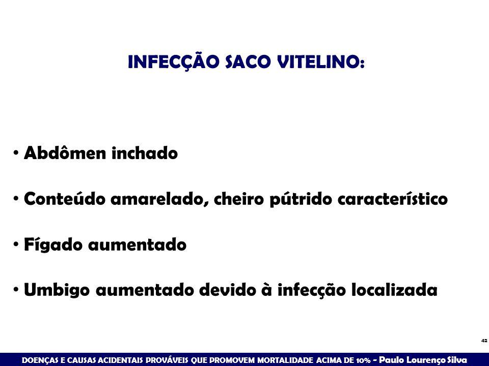 42 INFECÇÃO SACO VITELINO: Abdômen inchado Conteúdo amarelado, cheiro pútrido característico Fígado aumentado Umbigo aumentado devido à infecção local