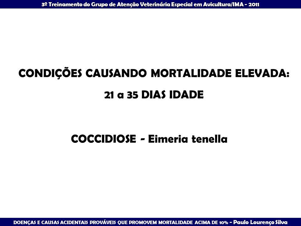 3º Treinamento do Grupo de Atenção Veterinária Especial em Avicultura/IMA - 2011 CONDIÇÕES CAUSANDO MORTALIDADE ELEVADA: 21 a 35 DIAS IDADE COCCIDIOSE