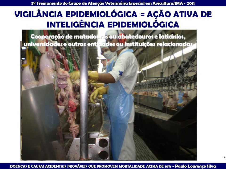 3º Treinamento do Grupo de Atenção Veterinária Especial em Avicultura/IMA - 2011 CONDIÇÕES CAUSANDO MORTALIDADE ELEVADA: 21 a 35 DIAS IDADE COCCIDIOSE - Eimeria tenella
