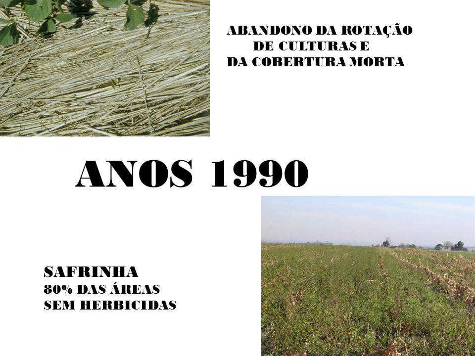 BANCO DE SEMENTES PICÃO LEITEIRO PLANTAS/m 2 71 33 MÉDIA/PLANTA 3.441 542 GERMINAÇÃO 80% 195.448 14366 CONTROLE 90% (2X-SOBRA/m 2 ) 1.954 144 OU SOBRA/ha 19.540.000 1.440.000 Gazziero,D.L.P.