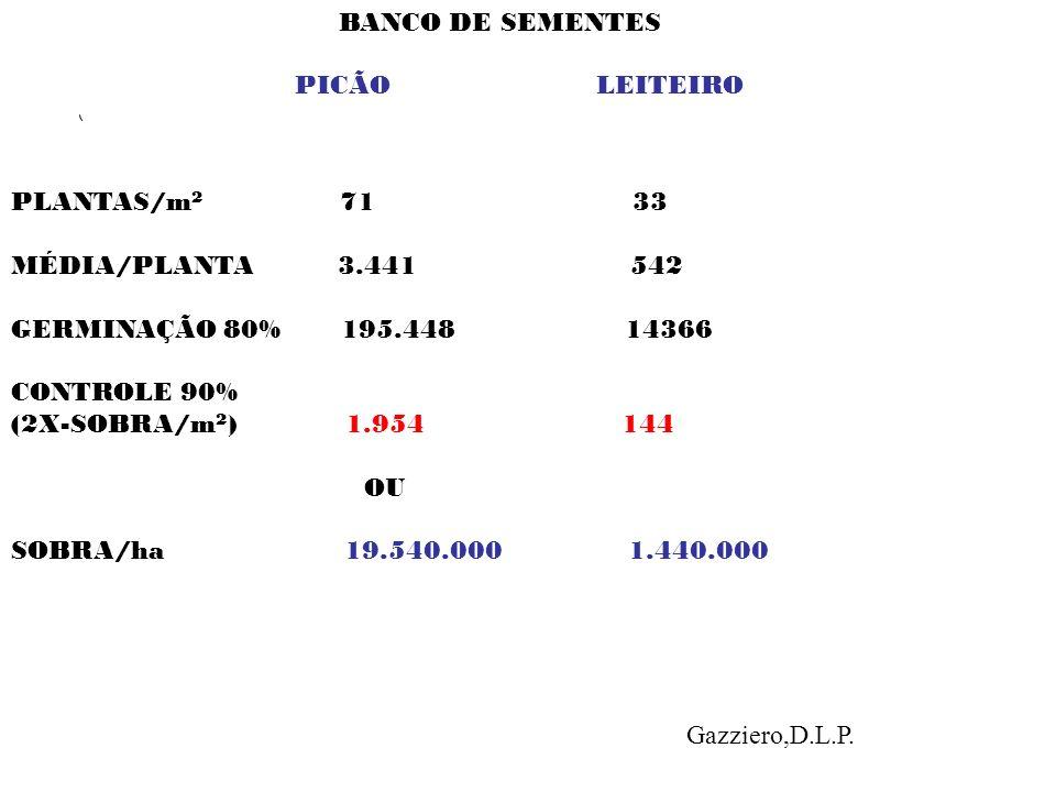 BANCO DE SEMENTES PICÃO LEITEIRO PLANTAS/m 2 71 33 MÉDIA/PLANTA 3.441 542 GERMINAÇÃO 80% 195.448 14366 CONTROLE 90% (2X-SOBRA/m 2 ) 1.954 144 OU SOBRA