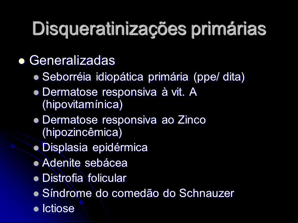 Disqueratinizações primárias Generalizadas Generalizadas Seborréia idiopática primária (ppe/ dita) Seborréia idiopática primária (ppe/ dita) Dermatose