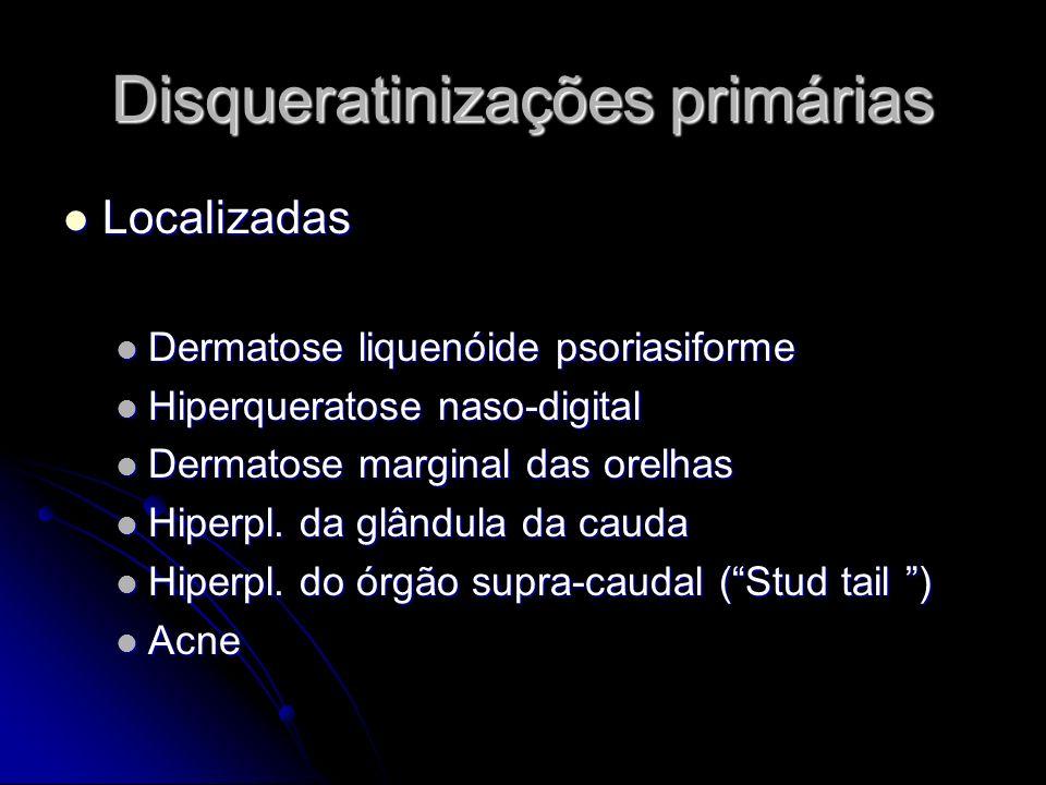 Disqueratinizações primárias Localizadas Localizadas Dermatose liquenóide psoriasiforme Dermatose liquenóide psoriasiforme Hiperqueratose naso-digital