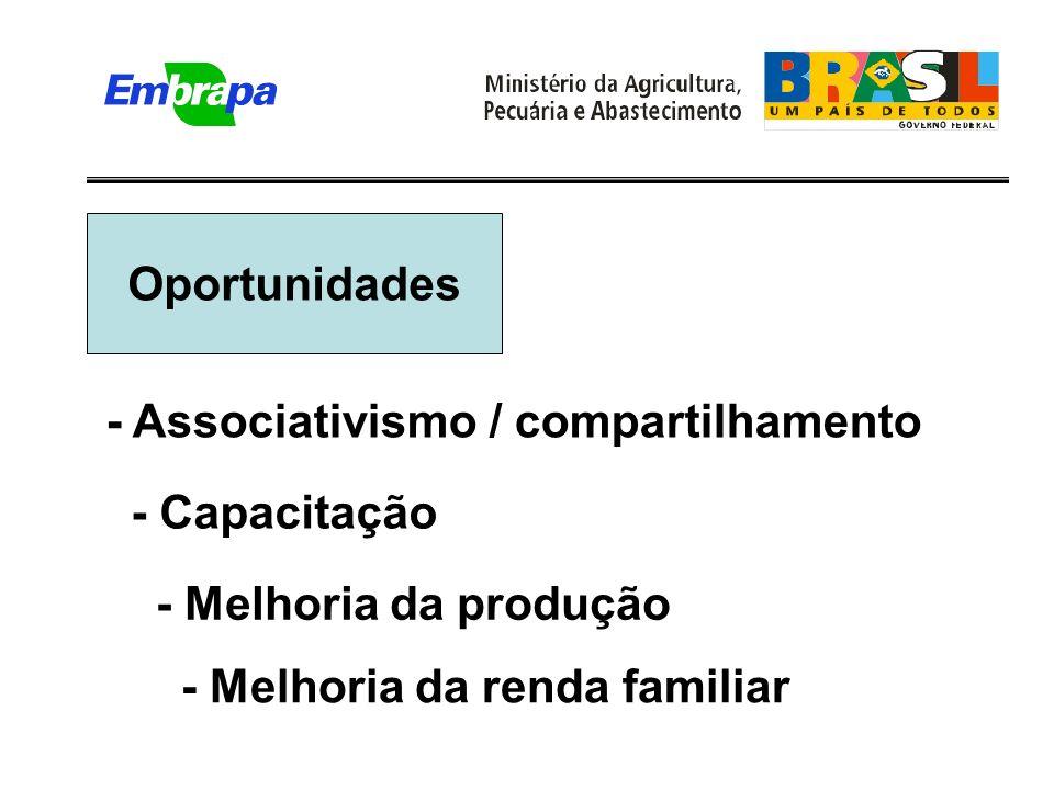 Oportunidades - Melhoria da renda familiar - Associativismo / compartilhamento - Melhoria da produção - Capacitação