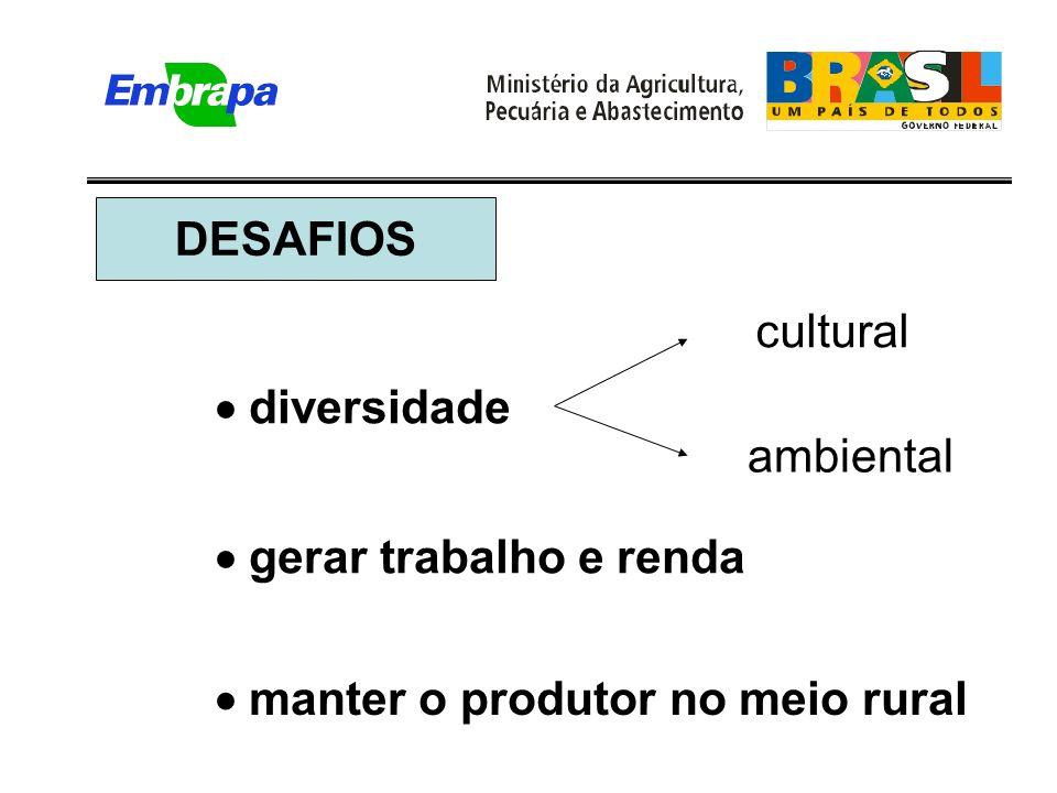 diversidade cultural ambiental gerar trabalho e renda manter o produtor no meio rural DESAFIOS