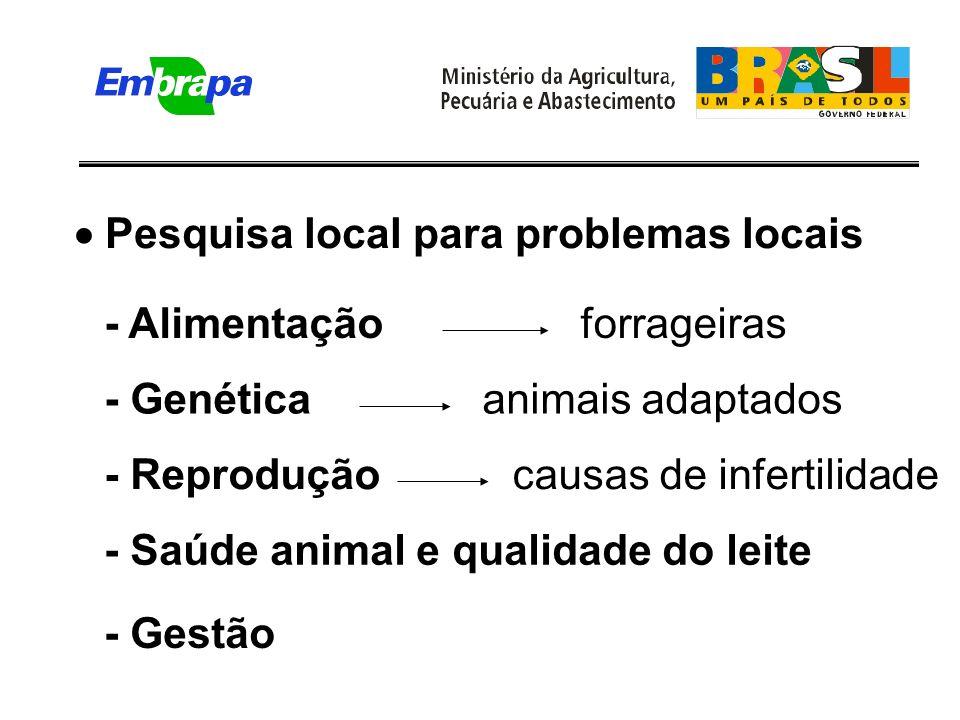 Pesquisa local para problemas locais - Alimentaçãoforrageiras - Genéticaanimais adaptados - Reproduçãocausas de infertilidade - Saúde animal e qualidade do leite - Gestão