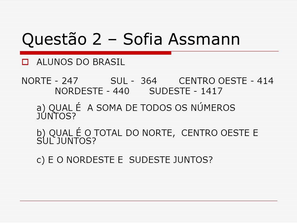 Questão 2 – Sofia Assmann ALUNOS DO BRASIL NORTE - 247 SUL - 364 CENTRO OESTE - 414 NORDESTE - 440 SUDESTE - 1417 a) QUAL É A SOMA DE TODOS OS NÚMEROS