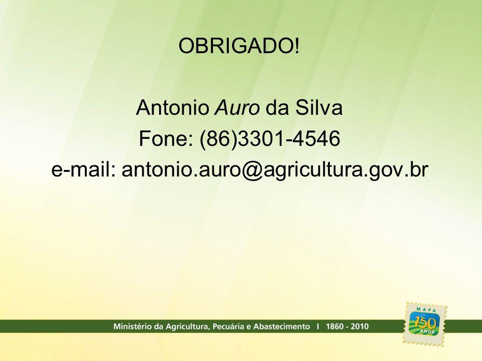 OBRIGADO! Antonio Auro da Silva Fone: (86)3301-4546 e-mail: antonio.auro@agricultura.gov.br
