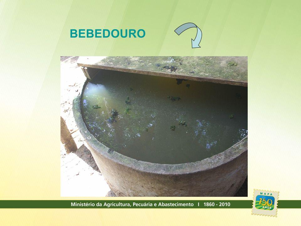 Definição de Leite – IN 62/2011 Entende por leite, sem outra especificação, o produto oriundo da ordenha completa, ininterrupta, em condições de higiene, de vacas sadias, bem alimentadas e descansadas.