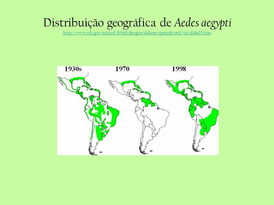 Distribuição geográfica de Aedes aegypti http://www.cdc.gov/ncidod/dvbid/dengue/slideset/spanish/set1/viii/slide03.htm http://www.cdc.gov/ncidod/dvbid