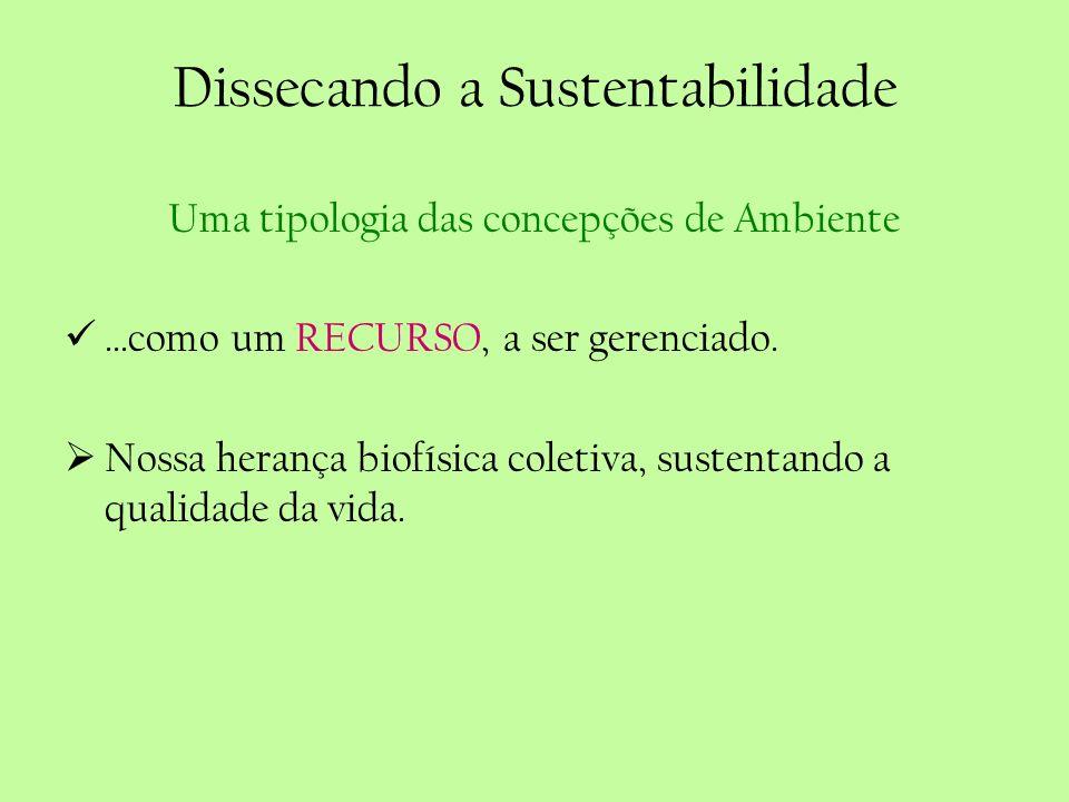 Dissecando a Sustentabilidade Uma tipologia das concepções de Ambiente...como um RECURSO, a ser gerenciado. Nossa herança biofísica coletiva, sustenta