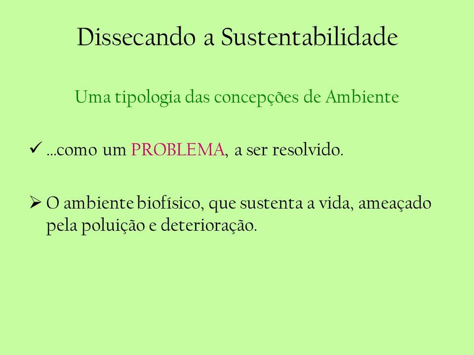 Dissecando a Sustentabilidade Uma tipologia das concepções de Ambiente...como um PROBLEMA, a ser resolvido. O ambiente biofísico, que sustenta a vida,