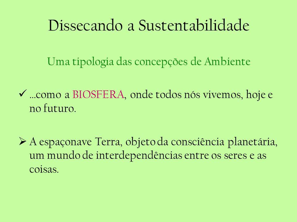 Dissecando a Sustentabilidade Uma tipologia das concepções de Ambiente...como a BIOSFERA, onde todos nós vivemos, hoje e no futuro. A espaçonave Terra