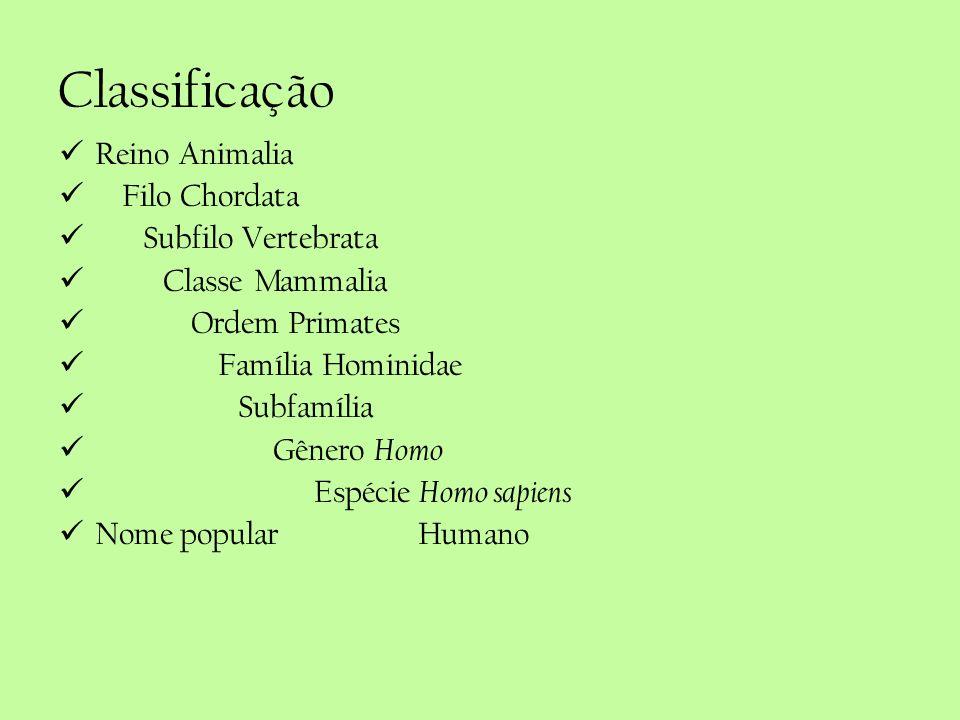 Classificação Reino Animalia Filo Chordata Subfilo Vertebrata Classe Mammalia Ordem Primates Família Hominidae Subfamília Gênero Homo Espécie Homo sap