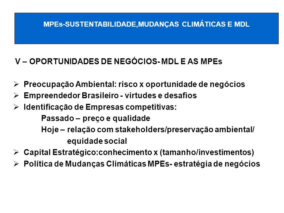 V – OPORTUNIDADES DE NEGÓCIOS- MDL E AS MPEs Preocupação Ambiental: risco x oportunidade de negócios Empreendedor Brasileiro - virtudes e desafios Ide