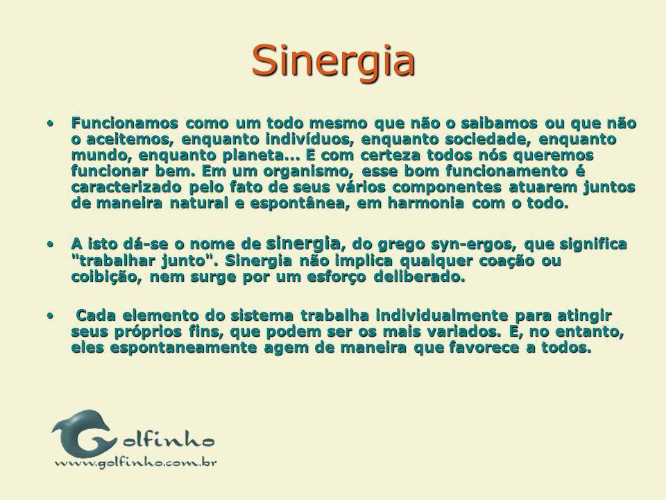 Sinergia Funcionamos como um todo mesmo que não o saibamos ou que não o aceitemos, enquanto indivíduos, enquanto sociedade, enquanto mundo, enquanto p