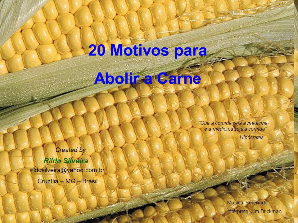20 Motivos para Abolir a Carne Hipócrates Que a comida seja a medicina e a medicina seja a comida.