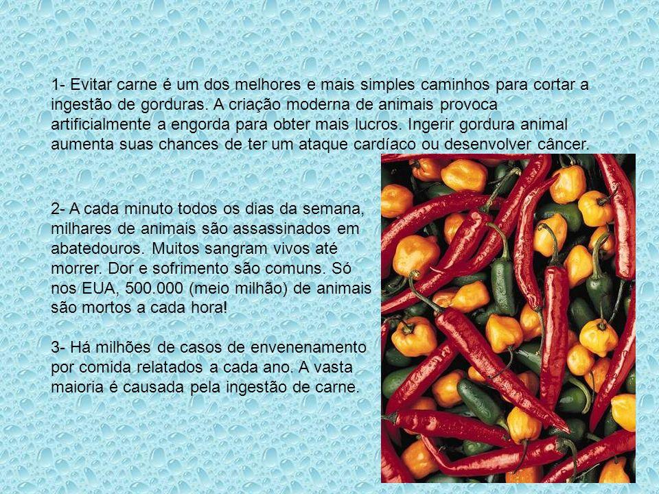 20 Motivos para Abolir a Carne Hipócrates Que a comida seja a medicina e a medicina seja a comida. Rildo Silveira Created by rildosilveira@yahoo.com.b