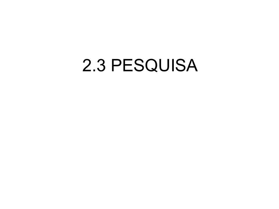 2.3 PESQUISA