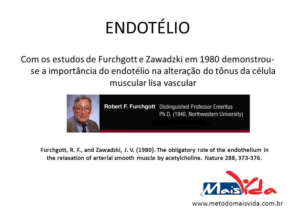 ENDOTÉLIO Com os estudos de Furchgott e Zawadzki em 1980 demonstrou- se a importância do endotélio na alteração do tônus da célula muscular lisa vascu