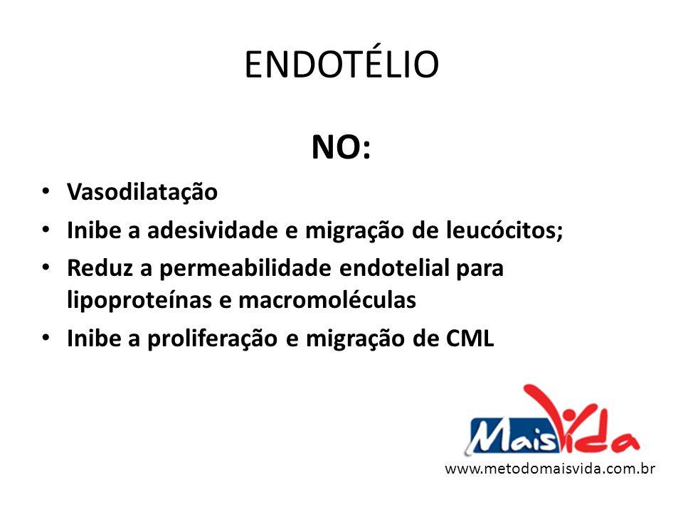 ENDOTÉLIO NO: Vasodilatação Inibe a adesividade e migração de leucócitos; Reduz a permeabilidade endotelial para lipoproteínas e macromoléculas Inibe