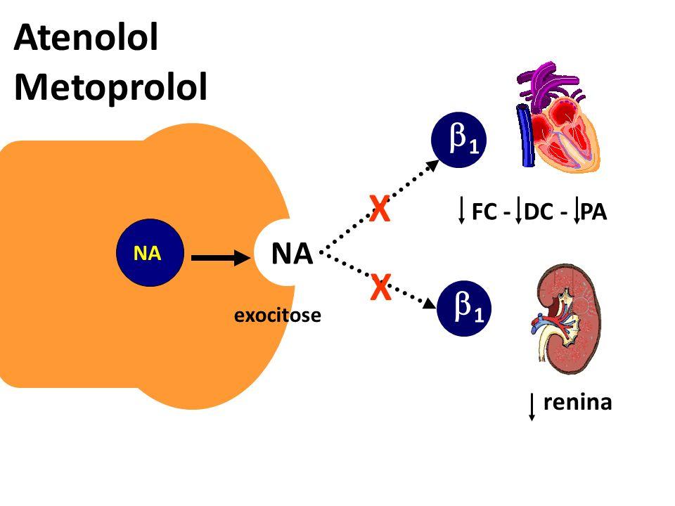 exocitose NA 1 1 Atenolol Metoprolol FC - DC - PA renina X X