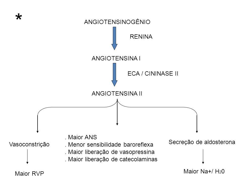 ANGIOTENSINOGÊNIO RENINA ANGIOTENSINA I ECA / CININASE II ANGIOTENSINA II Vasoconstrição. Maior ANS. Menor sensibilidade baroreflexa. Maior liberação