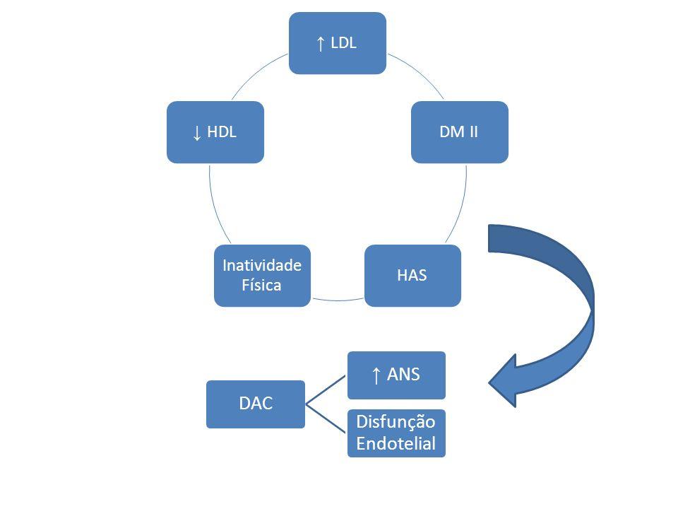 LDLDM IIHAS Inatividade Física HDL DAC ANS Disfunção Endotelial