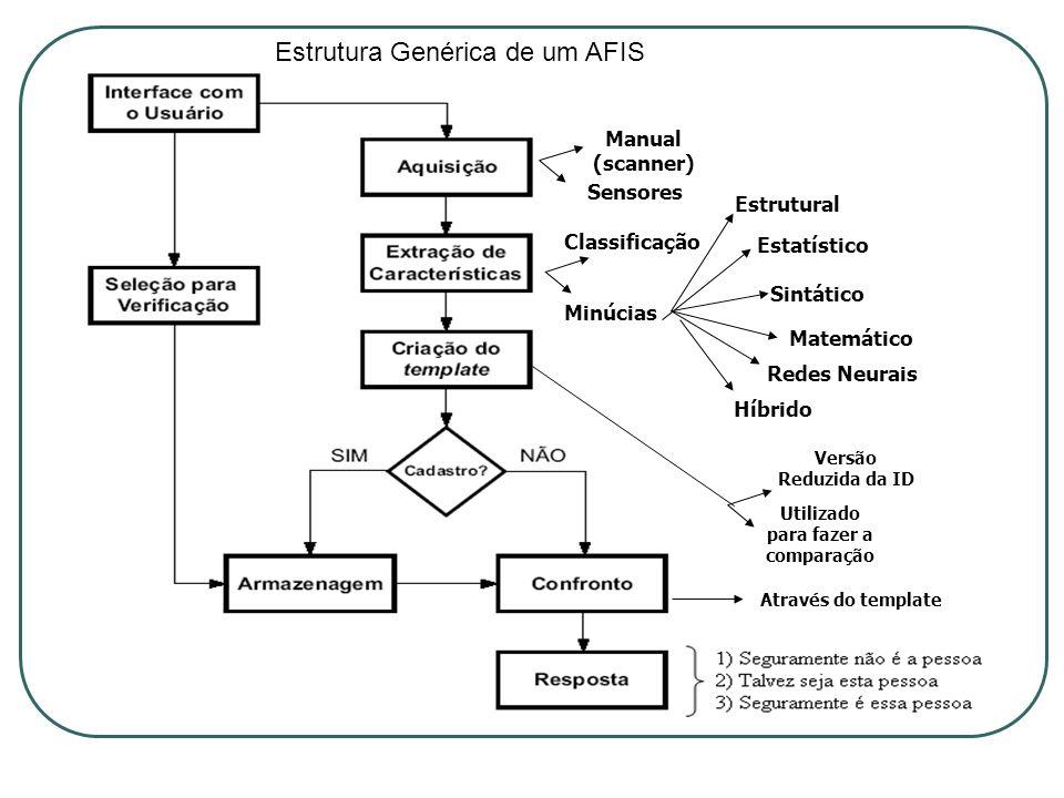 Estrutura Genérica de um AFIS Manual (scanner) Sensores Classificação Minúcias Estrutural Estatístico Sintático Matemático Redes Neurais Híbrido Versã