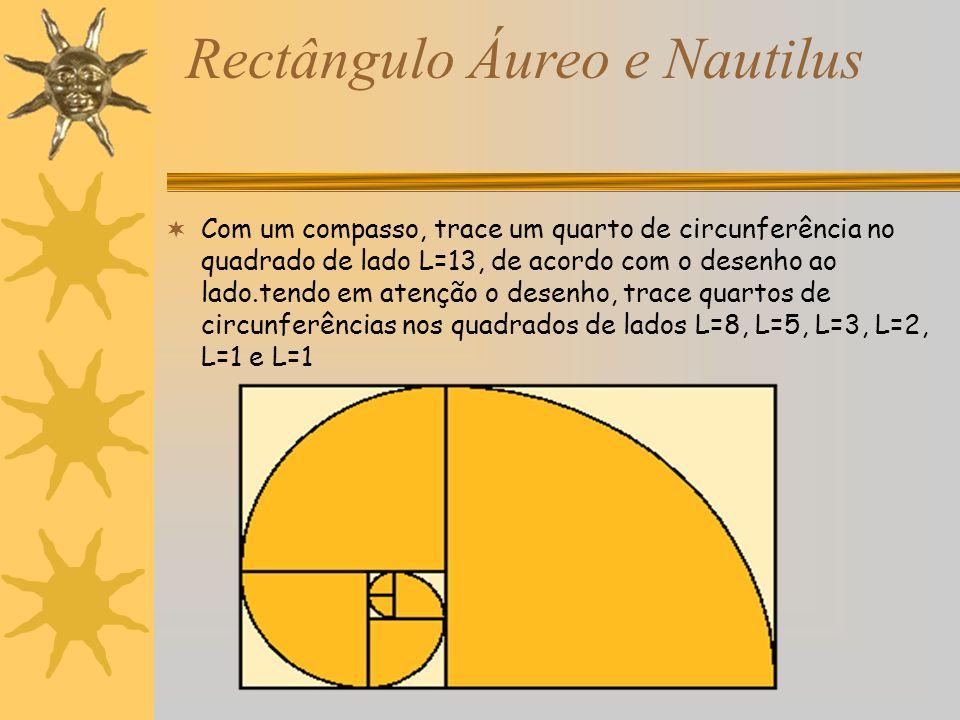 Com um compasso, trace um quarto de circunferência no quadrado de lado L=13, de acordo com o desenho ao lado.tendo em atenção o desenho, trace quartos