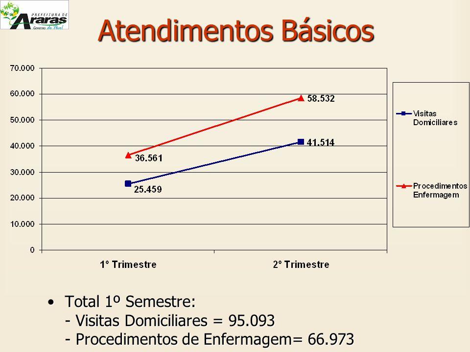 Atendimentos Básicos Total 1º Semestre:Total 1º Semestre: - Visitas Domiciliares = 95.093 - Procedimentos de Enfermagem= 66.973