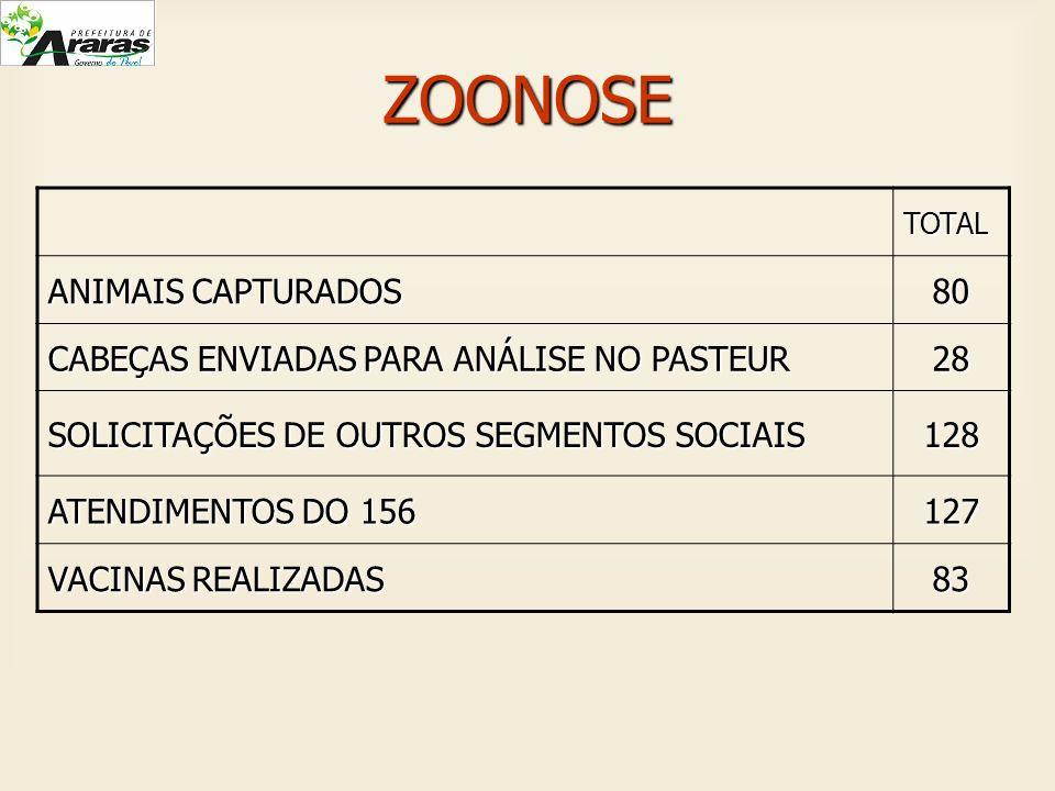 ZOONOSETOTAL ANIMAIS CAPTURADOS 80 CABEÇAS ENVIADAS PARA ANÁLISE NO PASTEUR 28 SOLICITAÇÕES DE OUTROS SEGMENTOS SOCIAIS 128 ATENDIMENTOS DO 156 127 VA