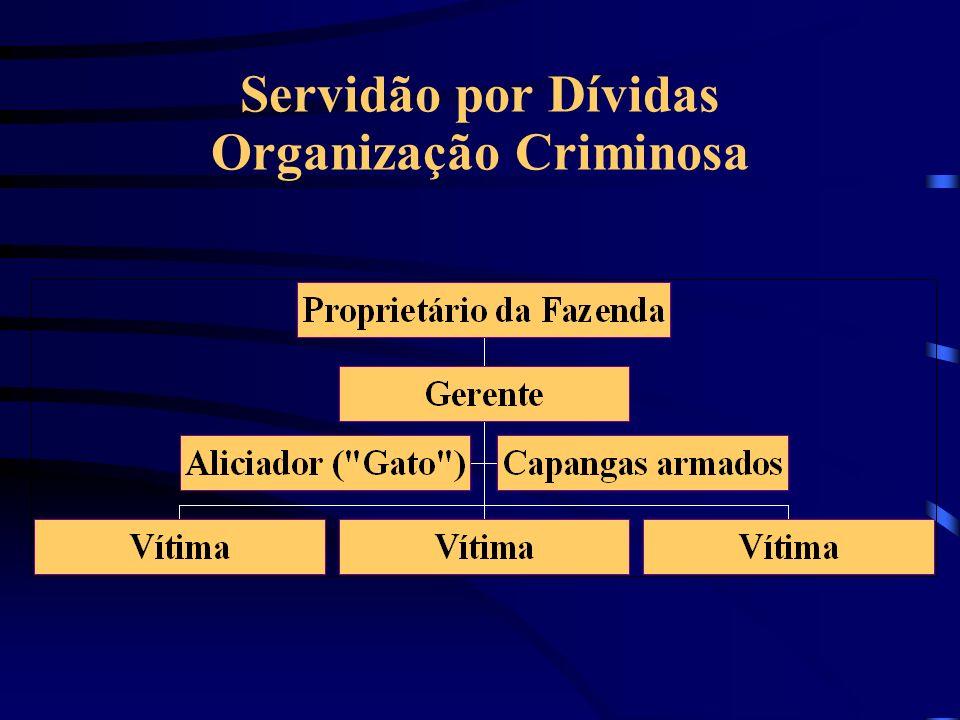 Servidão por Dívidas Maior incidência: Pará, Tocantins, Rondônia, Maranhão, Bahia e Mato Grosso.